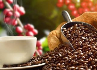 Best Kona Coffee Brands
