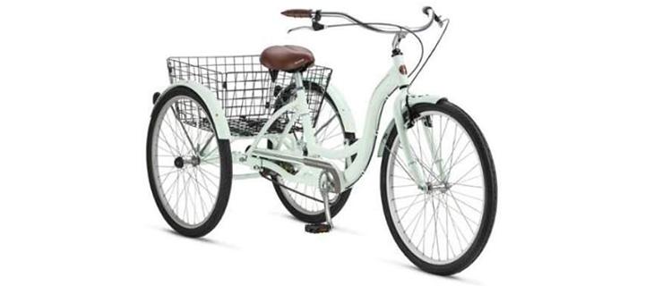 Meridian Adult Schwinn Beach Cruiser Bike