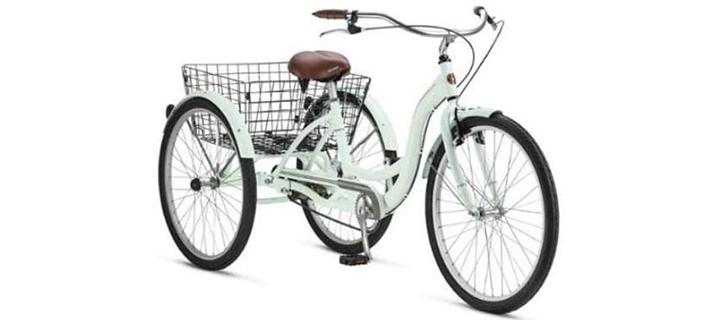 Meridian Adult Schwinn Tricycle