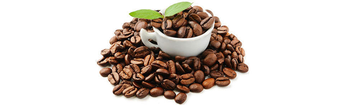RhoadsRoast Coffees Bolivian Organic 100% Arabica Fresh Coffee Beans